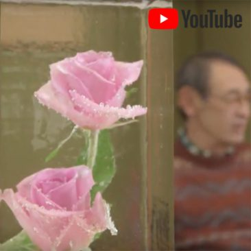 「匠の蔵 ―創る人 開く人 発する人― 」村山正男(4) TNCテレビ西日本